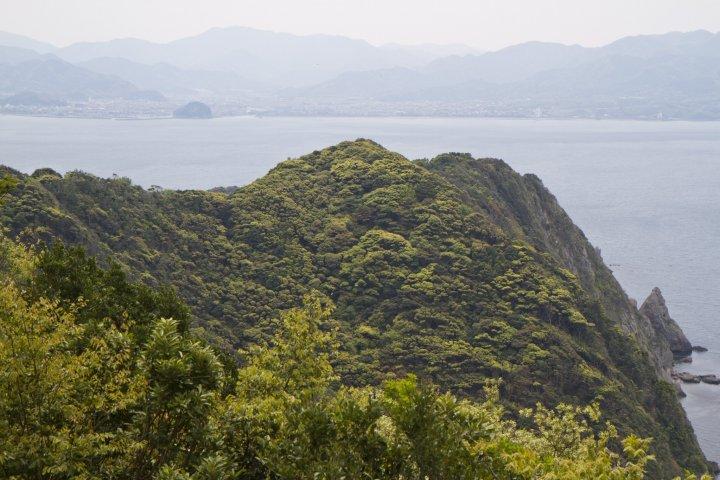 เกาะ Omi