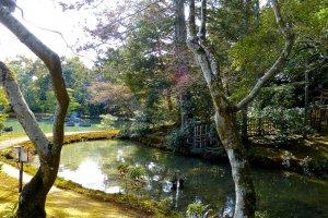 Une jolie promenade le long d'un cours d'eau