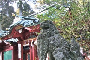 Hakone Shrine is surrounded by hundreds of ancient, majestic cedar trees.