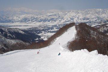 野沢温泉スキー場 in 長野 - Nozawa-onsen!