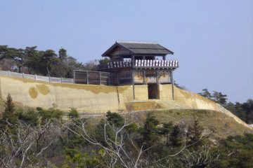 Kinojo Castle Overlooking Soja City