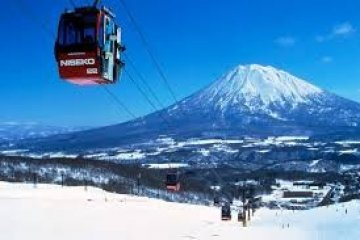 นิเซโกะ(ニセコ):สรวงสวรรค์แห่งผงสีขาว