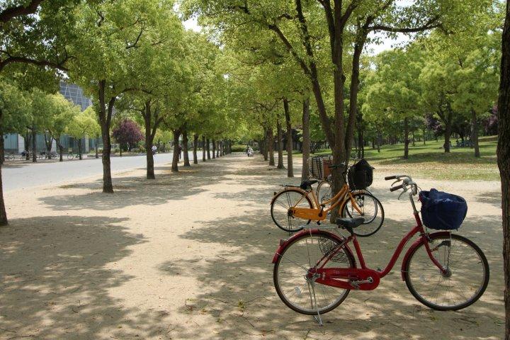 Flower Expo Memorial Park