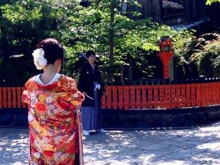 Niềm vui và hạnh phúc trên những con đường cây xanh ở Kyoto