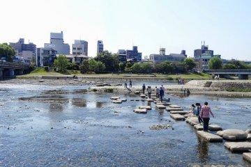 ปั่นจักรยานชมแม่น้ำคะโมะ เกียวโต