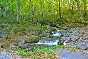 One of several beautiful waterfalls near the Nyuto-Onsenkyo, (National Park Village Resort)