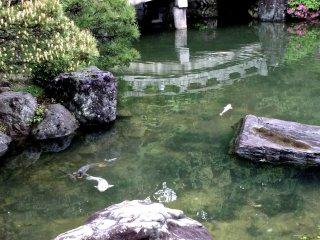 Un pont de pierre sur l'étang du jardin