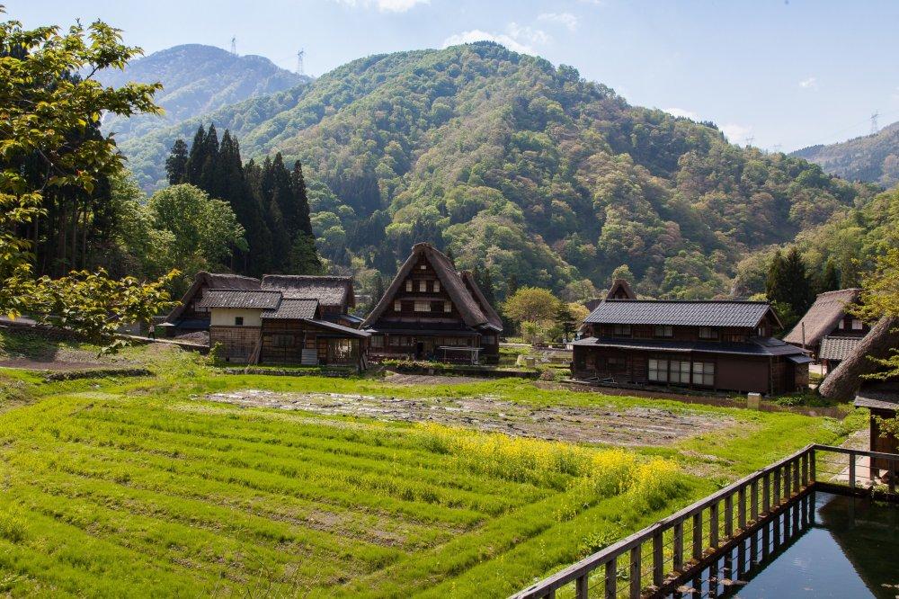 Vue sur les rizières et une partie du village