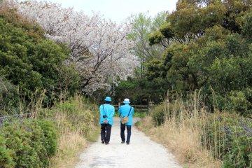 Tokyo Port's Wild Bird Park