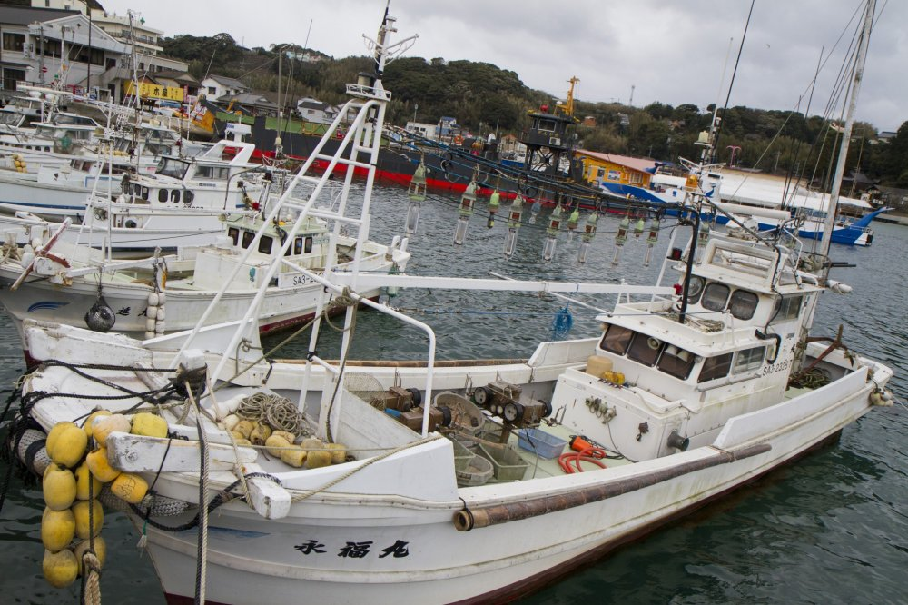 Yobuko Harbor is lined with fishing vessels