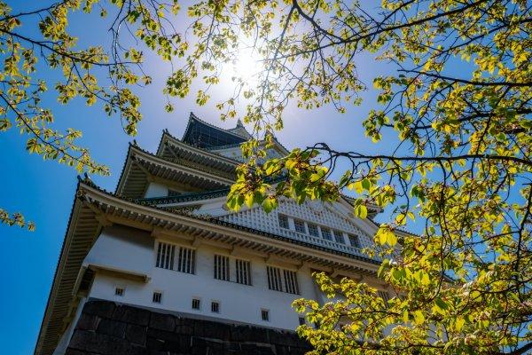 Fukuchiyama Castle and Park