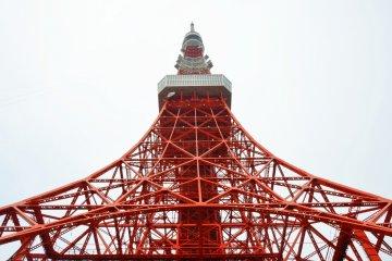 قصة حب مع برج طوكيو