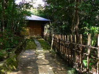 Stepping stones and a rustic bamboo fence