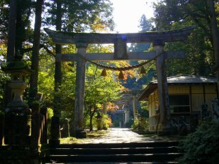 A series of stone torii leading to a shrine