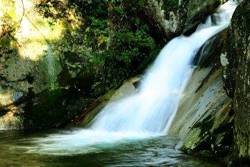 命の水を育む美しき山麓、大山の渓谷美