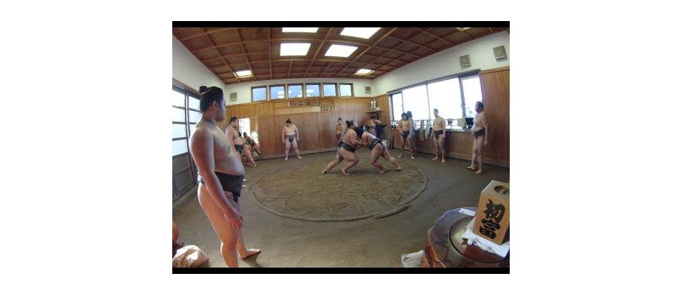 L'écurie de Sumo Tatsunami