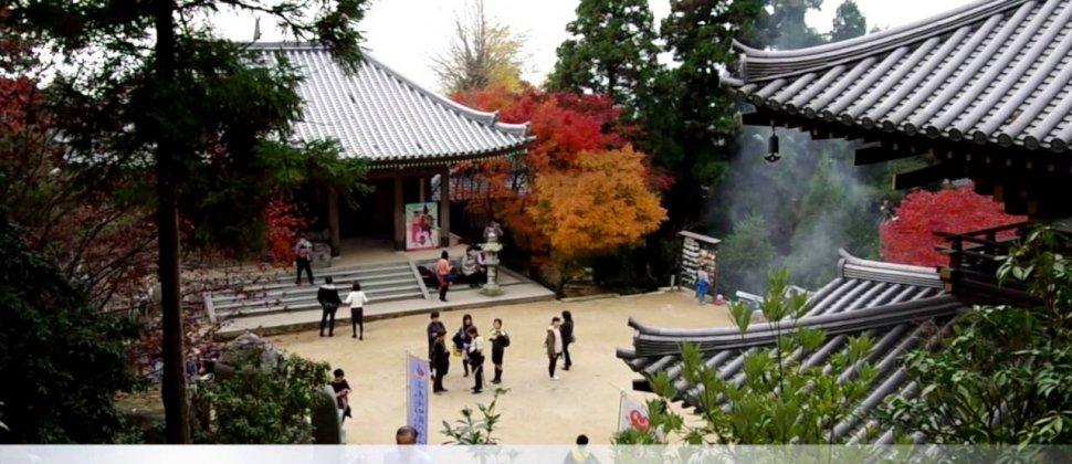 Andando pelo Santuário Itsukushima