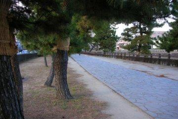 Nikko Kaido near Soka