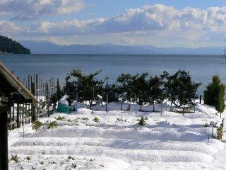 Rangées de potager sous la couche de neige