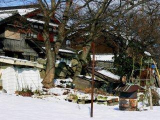 호숫가에서 바라본 오래된 호숫가 집