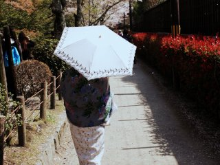 This lady obviously knows what to wear for a cherry blossom viewing. I will just follow her to my favorite place in Kyoto during any time of the year...