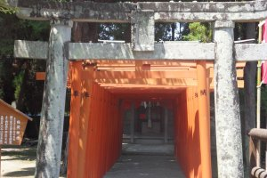 Shrine indicated by red torii gates