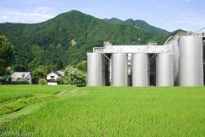 Une des plus grosse brasserie de saké à Niigata