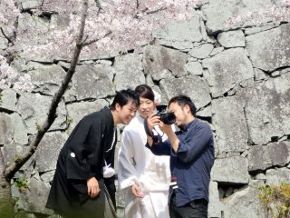 A bride and groom pause to look at a photo taken of them under a cherry tree