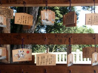 Ema plaques on display; theyare written on by visitors to the shrine detailing their wishes and plans for the future.