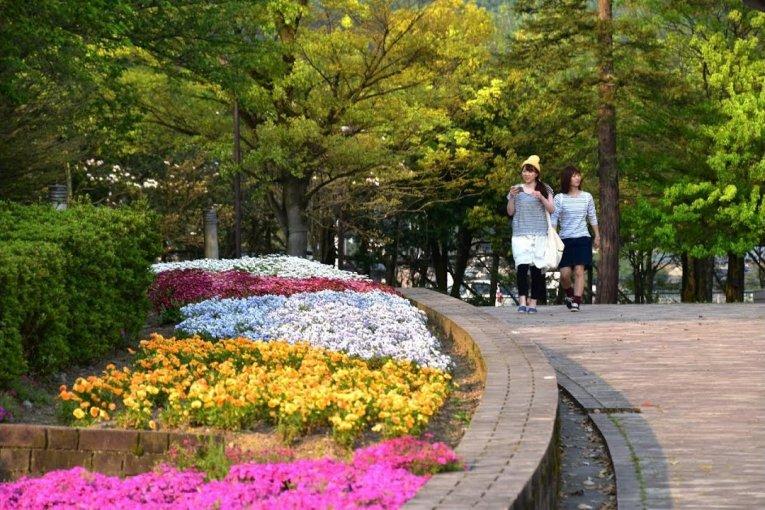 Выходной в Зеленом Центре Фукуи