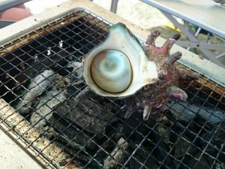 Delicious turban shells or in Japanese, sazaesan on sale