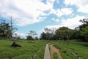 The path to Daijakura crossing a meadow