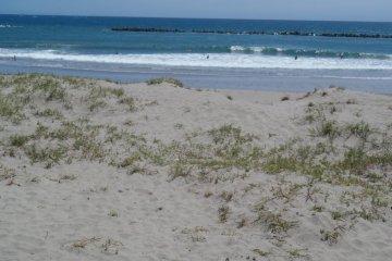 Susuki beach