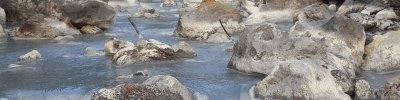 Tamagawa Onsen : Un Autre Monde