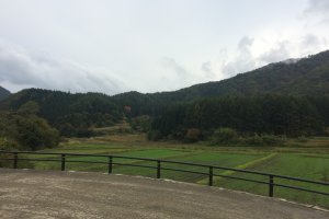 The view of the fields in Ouchijuku near the soba making studio.