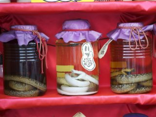 Habushu or Okinawan Snake wine ! Real pit vipers drowned to death in Awamori makes for this nutritious drink.