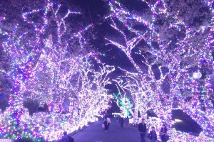 This Jewellery fantasy avenue provides a music show with over 400,000 lights just 100 meters