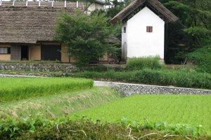 View from Hattoji International Villa, Bizen City, Okayama