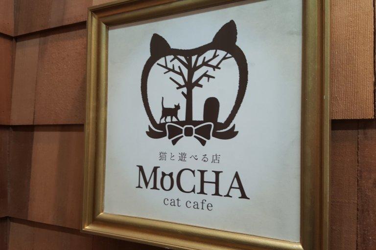 카페 모차