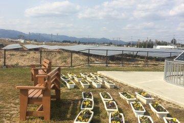 Solar Agripark in Fukushima