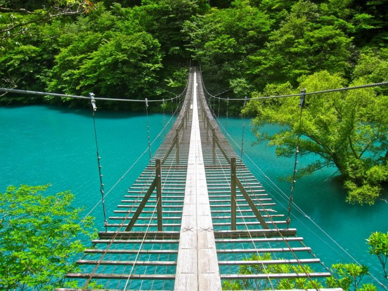 Suspension Bridges Of The Sumatakyo Shizuoka Japan