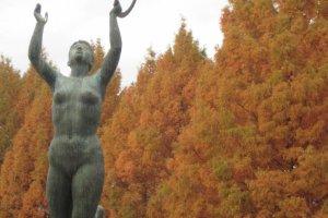 Autumn Colors, Central Park (Chuo Koen).