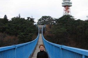 Utsunomiya Tower and suspension bridge, Hachimanyama Park.