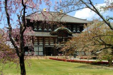 Tôdai-ji, Le Grand Temple de l'Est