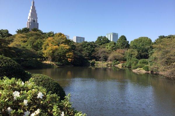 Le parc compte plusieurs étangs et offre un bon bol d\'air