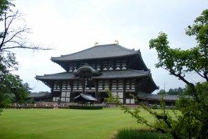 Templo Todaiji.