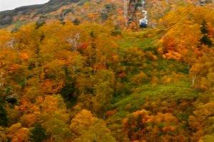 Le téléphérique qui vous amène au sommet de la montagne
