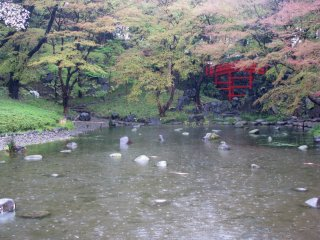 일본식 정원에서