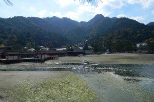 Kukai construyó un templo en Monte Misen