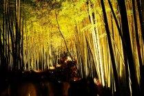 งานเทศกาลโคมไฟอะระชิยะมะในเกียวโต
